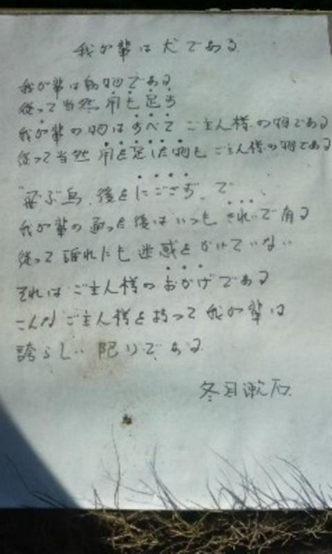 コピー ~ 100119_1405~01.jpg