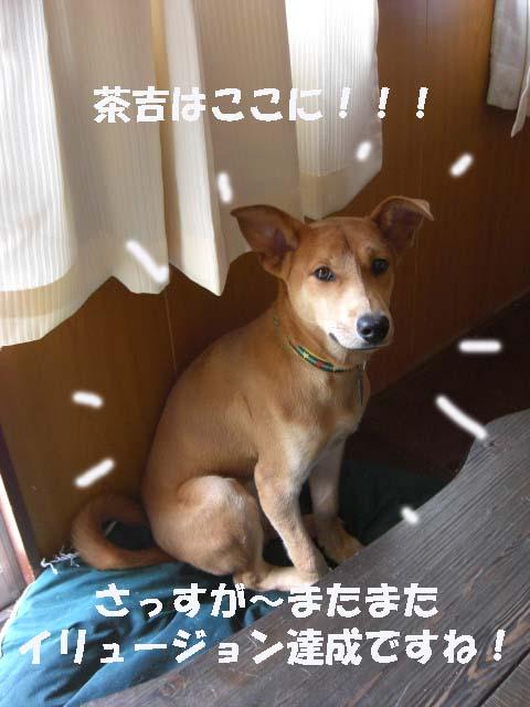 さすが!.jpg
