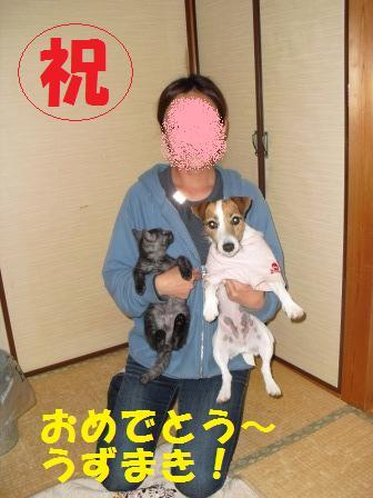 コピー 〜 2009121228.JPG