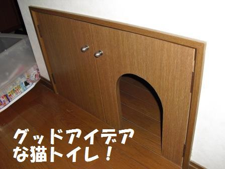 コピー 〜 2009121230.JPG