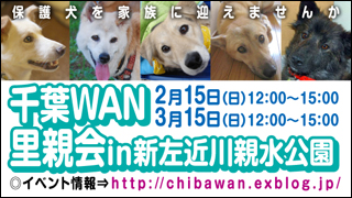chibawan_satooyakai_shinsakongawa_320x180.jpg